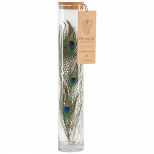 Fiole avec plume de Paon